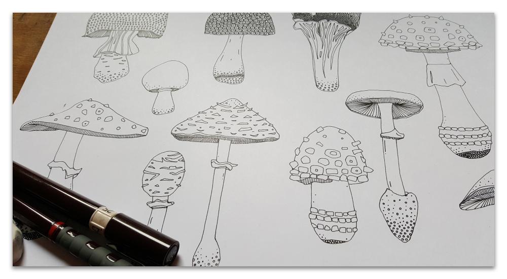 mushrooms work in progress illustration sharon turner