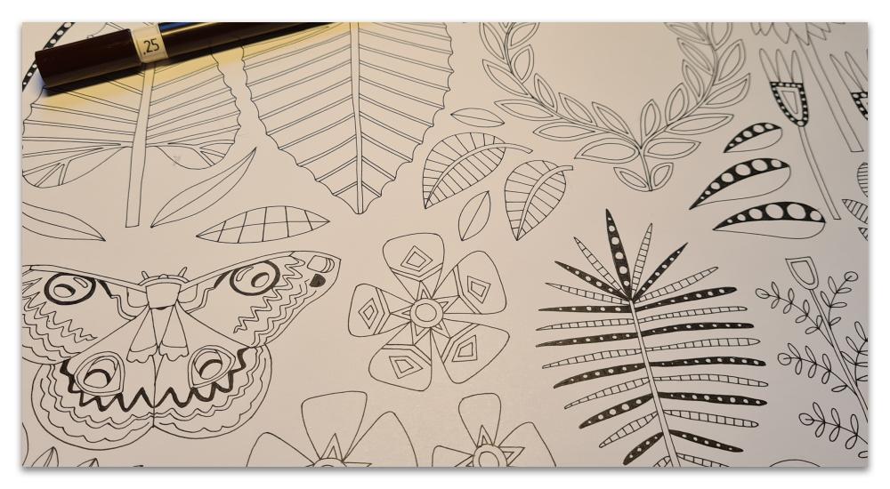 work in progress WIP illustration process tropical moth paradise sharon turner