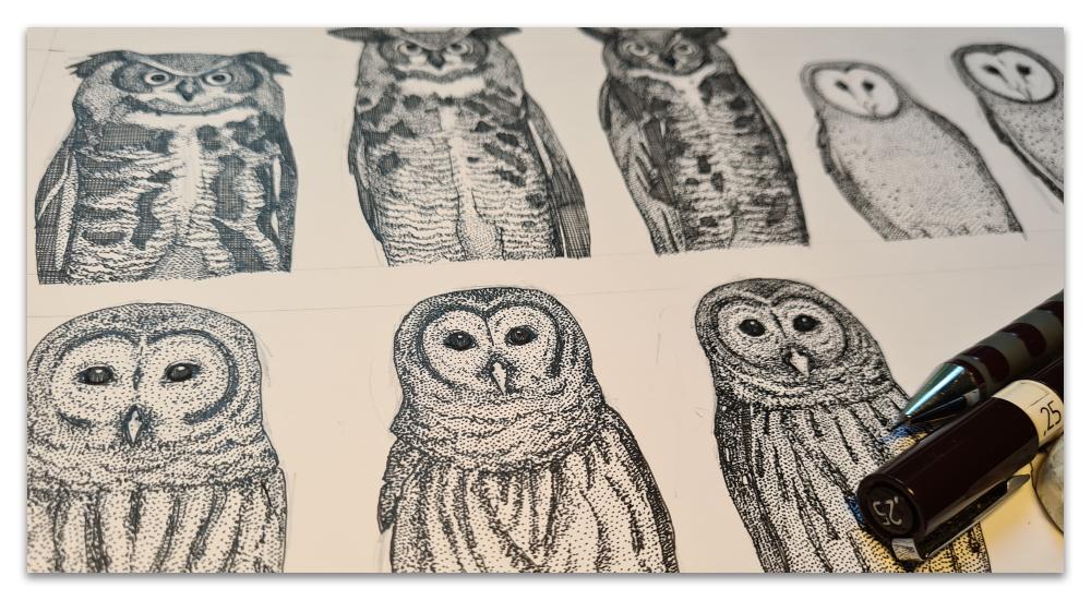 owls NC work in progress illustration drawing WIP sharon turner spoonflower